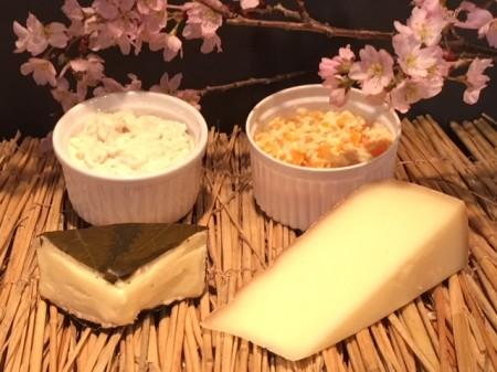 SUPR厳選 お花見チーズセット